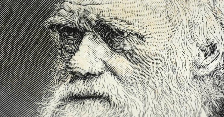 12 февраля отмечается Международный день науки и гуманизма или День Дарвина