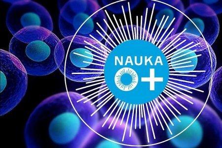 Университет «Дубна» станет региональной площадкой Фестиваля NAUKA 0+