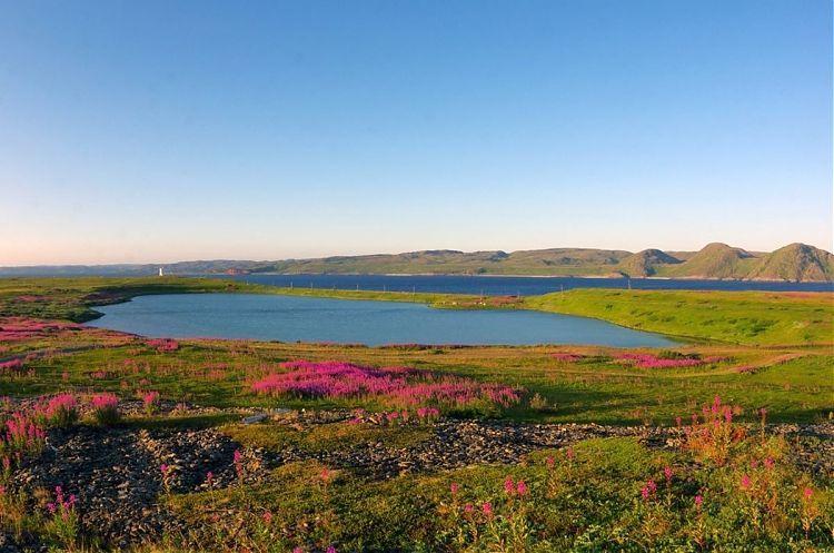 Интерактивную выставку об уникальном озере Могильном на острове Кильдин представят в Мурманске